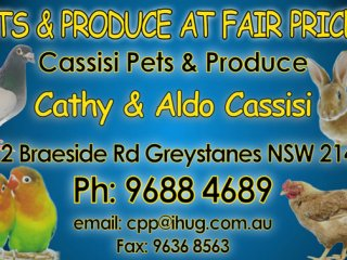 Cassisi Pets & Produce
